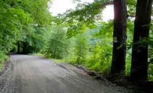 Lamb-Hill-Road